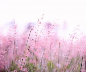 Stressin poistoa meditaatio hoidolla